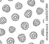 raspberries doodle seamless... | Shutterstock .eps vector #1064537384