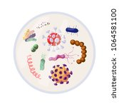 antibacterial sign set.... | Shutterstock .eps vector #1064581100
