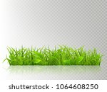 beautiful realistic detailed... | Shutterstock .eps vector #1064608250