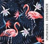 tropical birds pink flamingo... | Shutterstock .eps vector #1064636528