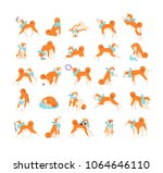 collection of dog performing... | Shutterstock .eps vector #1064646110