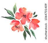 watercolor red flowers   Shutterstock . vector #1064701409