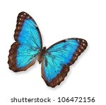 Stock photo blue butterfly isolated on white 106472156