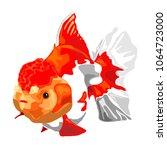 goldfish on a white background. | Shutterstock .eps vector #1064723000