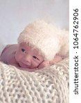 little newborn baby | Shutterstock . vector #1064762906