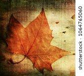 autumn on wooden background | Shutterstock . vector #1064765060