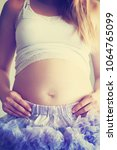 beautiful pregnant woman at home | Shutterstock . vector #1064765099