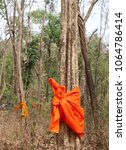 Small photo of Closeup of yellow cloth ordained by monk around the trees in the forest, vertical view. Symbol of forest protection and environmental preservation for global warming reduction in thai traditional way.