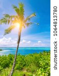 palm tree with sunshine on... | Shutterstock . vector #1064813780