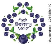 blueberry vector art | Shutterstock .eps vector #1064856440