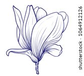 magnolia flower drawing and... | Shutterstock .eps vector #1064912126