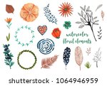 watercolor floral elements for... | Shutterstock . vector #1064946959