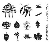 forest and nature black icons... | Shutterstock .eps vector #1064987978