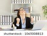 excited businesswoman...   Shutterstock . vector #1065008813
