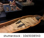 rome  vatican city italy  ... | Shutterstock . vector #1065038543