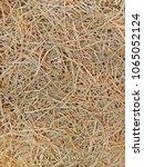 yellow grass  dry straw texture ...   Shutterstock . vector #1065052124