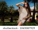 beautiful  elegant girl  model... | Shutterstock . vector #1065087929