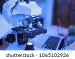 medical laboratory  scientist...   Shutterstock . vector #1065102926