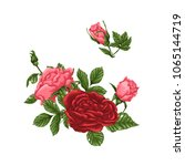 set of pink and red roses ... | Shutterstock .eps vector #1065144719