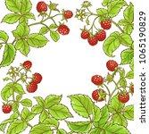 raspberry branch vector frame | Shutterstock .eps vector #1065190829