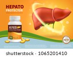 hepatoprotector colorful... | Shutterstock .eps vector #1065201410