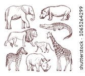 different animals of savana and ... | Shutterstock .eps vector #1065264299