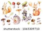 cute watercolor bohemian baby... | Shutterstock . vector #1065309710