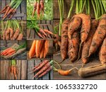 collage with fresh carrot on... | Shutterstock . vector #1065332720