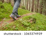 walking in the woods long a path | Shutterstock . vector #1065374939
