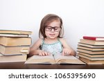 beautiful little girl in... | Shutterstock . vector #1065395690