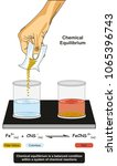 chemical equilibrium... | Shutterstock . vector #1065396743