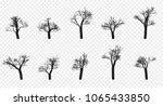 naked trees silhouettes set.... | Shutterstock .eps vector #1065433850
