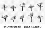 naked trees silhouettes set.... | Shutterstock .eps vector #1065433850