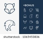 zoo icon set and turtle with...