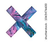 x shape with painted tropical... | Shutterstock . vector #1065476600