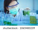 green herbal medicine research... | Shutterstock . vector #1065483239