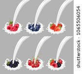 collection icons of fruit and... | Shutterstock .eps vector #1065506054