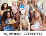 Stock photo two families celebrating pet dog s birthday at home 1065534566