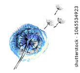 watercolor blue dandelion on... | Shutterstock .eps vector #1065534923