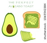 avocado toast  avocado cut in... | Shutterstock .eps vector #1065542384