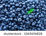 macro texture of blueberry... | Shutterstock . vector #1065656828