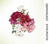 bouquet of peonies   watercolor ... | Shutterstock .eps vector #1065666680
