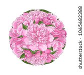 pink peony bouquet in round...   Shutterstock .eps vector #1065682388