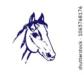 Stock vector hand drawn sketch of horse head bllue ink line drawing isolated on white background mustang 1065768176