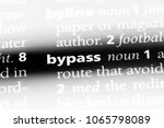 bypass word in a dictionary.... | Shutterstock . vector #1065798089