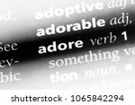 Small photo of adore word in a dictionary. adore concept.