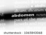 abdomen word in a dictionary.... | Shutterstock . vector #1065843068