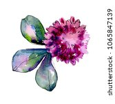 wildflower clover. floral... | Shutterstock . vector #1065847139
