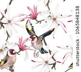 watercolor goldfinch   royal... | Shutterstock . vector #1065848138