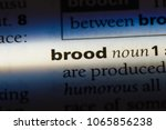 Small photo of brood word in a dictionary. brood concept.